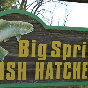 Big Springs Fish Hatchery
